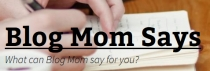 Blog Mom Says