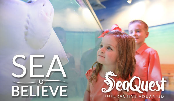 SeaQuest Sea to Believe